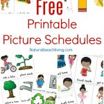 Free Printable Picture Schedule Cards   Visual Schedule Printables   Free Printable Schedule Cards