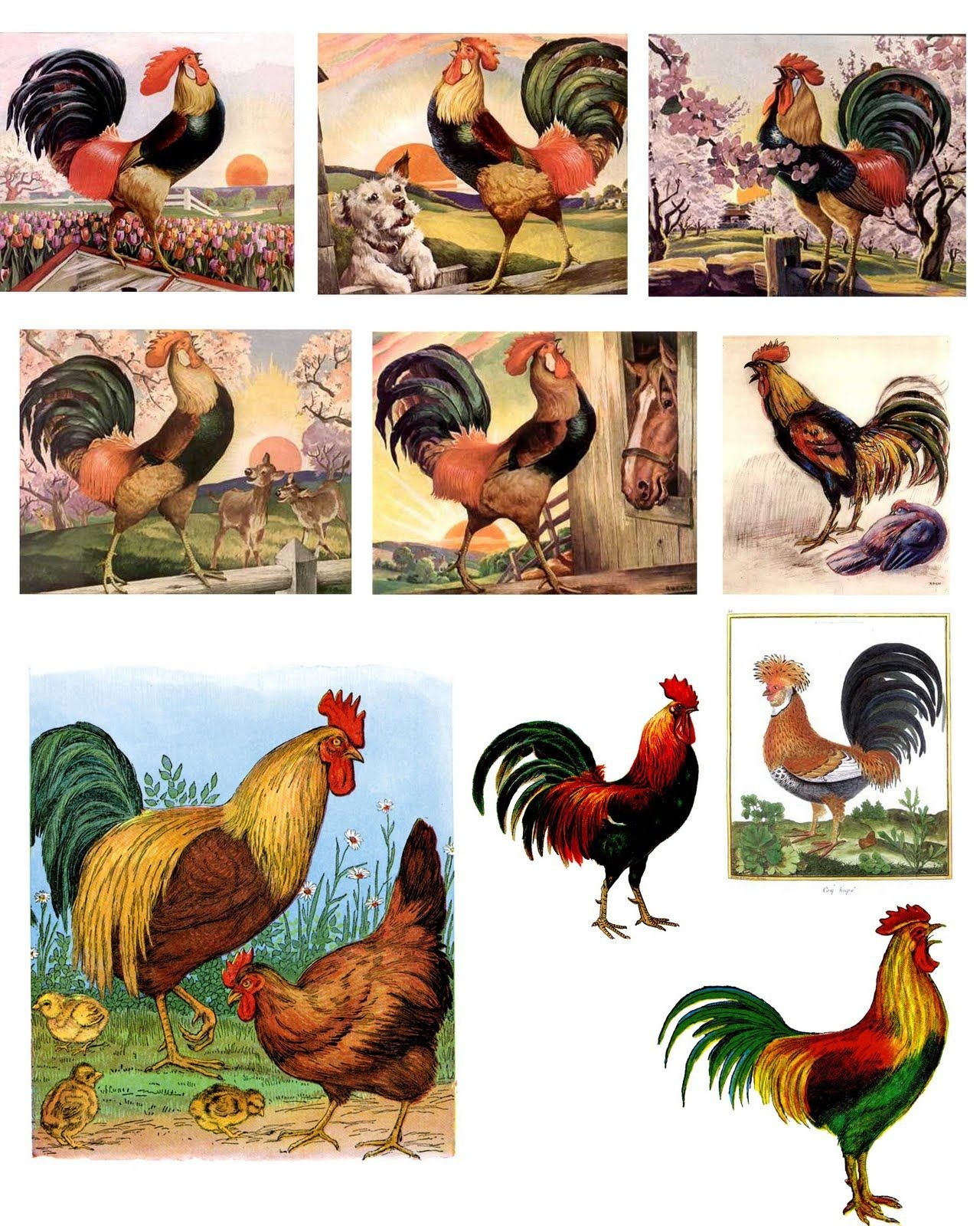 Free Printable Rooster   Free Digital Downloadsthe Timeless - Free Printable Pictures Of Roosters