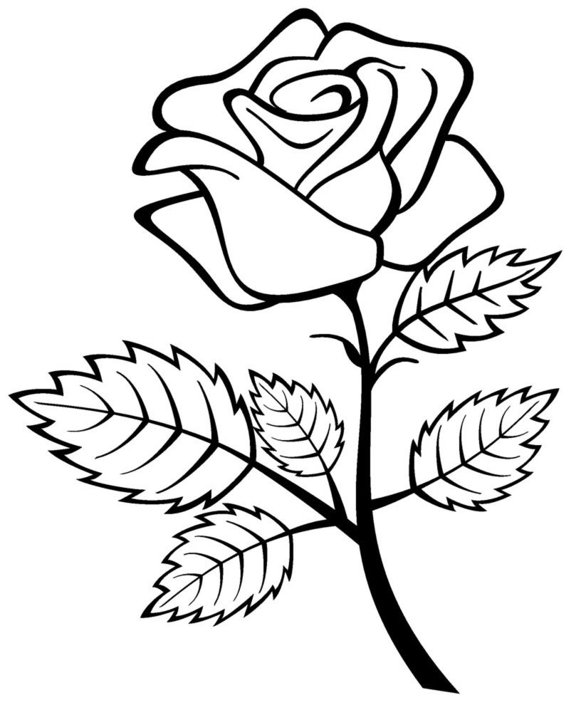 Free Printable Roses Coloring Pages For Kids | For The Home | Rose - Free Printable Roses