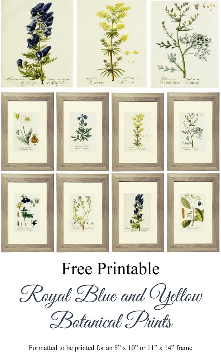Free Printable Royal Blue And Yellow Botanical Art   Lg Limitless - Free Printable Artwork To Frame