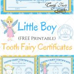 Free Printable Tooth Fairy Certificates | Parenting | Tooth Fairy   Free Printable Tooth Fairy Letter And Envelope