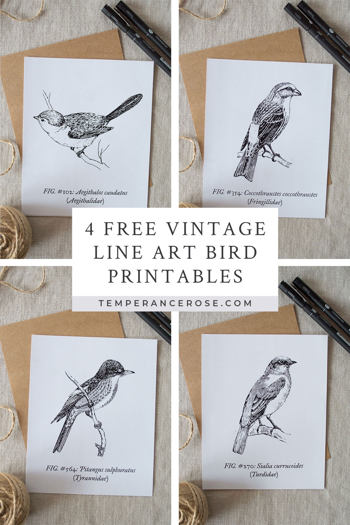 Free Printable Vintage Bird Line Art - Free Printable Images Of Birds