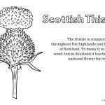 Free Printables: Learning About Scotland   Hodgepodgedays   Free Printable Scottish Flag