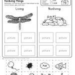 Freebie! No Prep Kindergarten Science Doodle Printables | T E A C H   Free Printable Worksheets For Kids Science