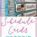 Freebie Schedule Cards | Classroom (When I Go Back :) | Preschool   Free Printable Classroom Labels With Pictures