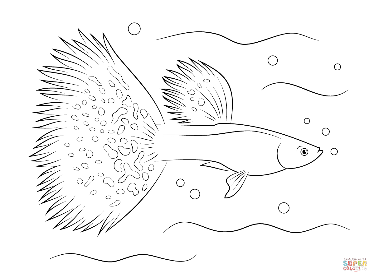 Guppy Coloring Page | Free Printable Coloring Pages - Free Printable Fish Coloring Pages