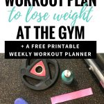 How To Make Your Own Workout Plan [Printable] — The Mermaid With   Free Printable Gym Workout Plans