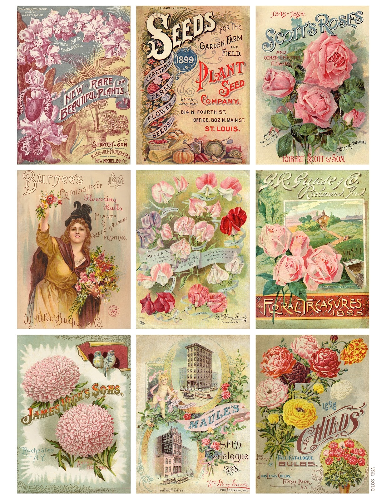 Jodie Lee Designs: Free Printable Download! Vintage Seed Packet Cards! - Free Printable Vintage Pictures