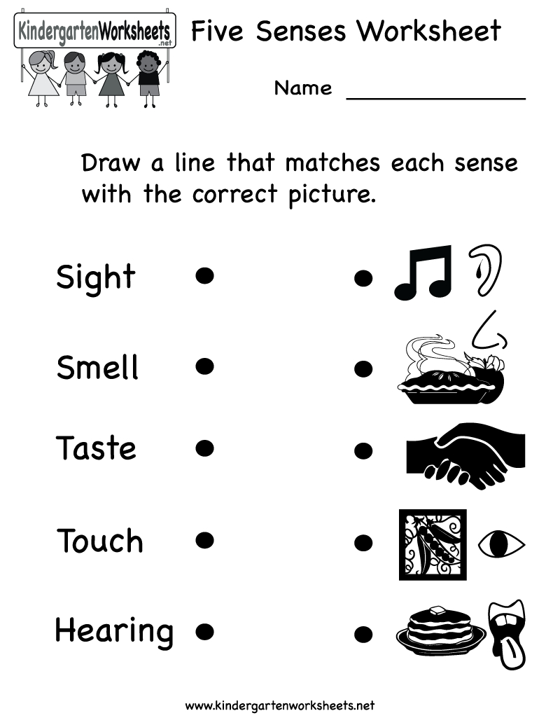Kindergarten Five Senses Worksheet Printable | Teaching Ideas - Free Printable Worksheets Kindergarten Five Senses