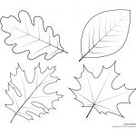 Leaf Templates & Leaf Coloring Pages For Kids | Leaf Printables   Free Printable Leaf Template