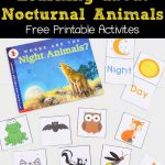 Learning About Nocturnal Animals Free Printable Activities | Animals   Free Printable Animal Classification Cards