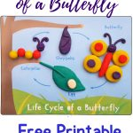 Life Cycle Of A Butterfly Playdough Mat   Free Printable   Views   Free Printable Playdough Mats