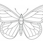 Monarch Butterfly Coloring Page | Free Printable Coloring Pages   Free Printable Butterfly