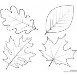 Oak Leaf Drawing Template At Paintingvalley | Explore Collection   Free Printable Oak Leaf Patterns