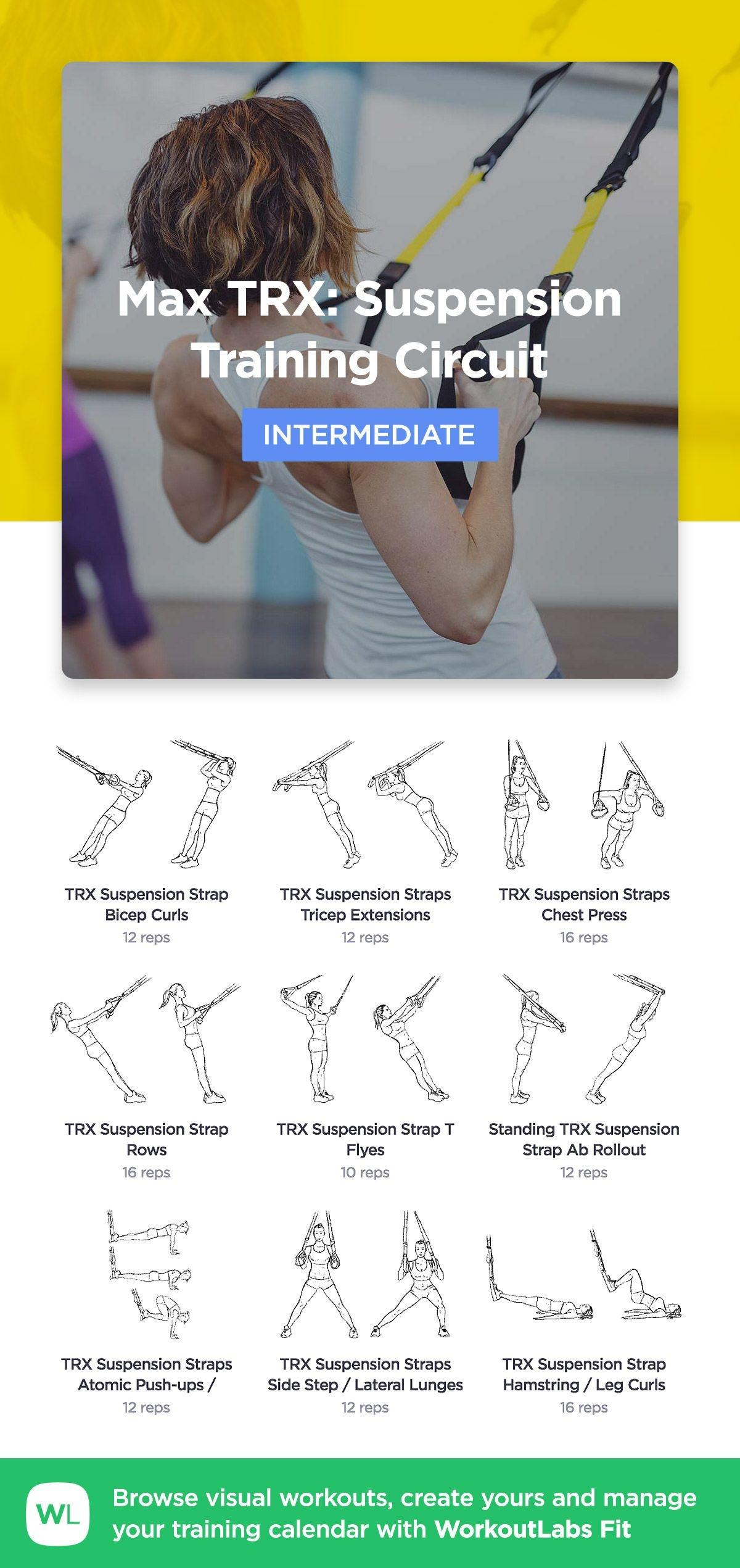 Pinprincess Stephanie On Exercise | Suspension Training, Trx - Free Printable Trx Workouts