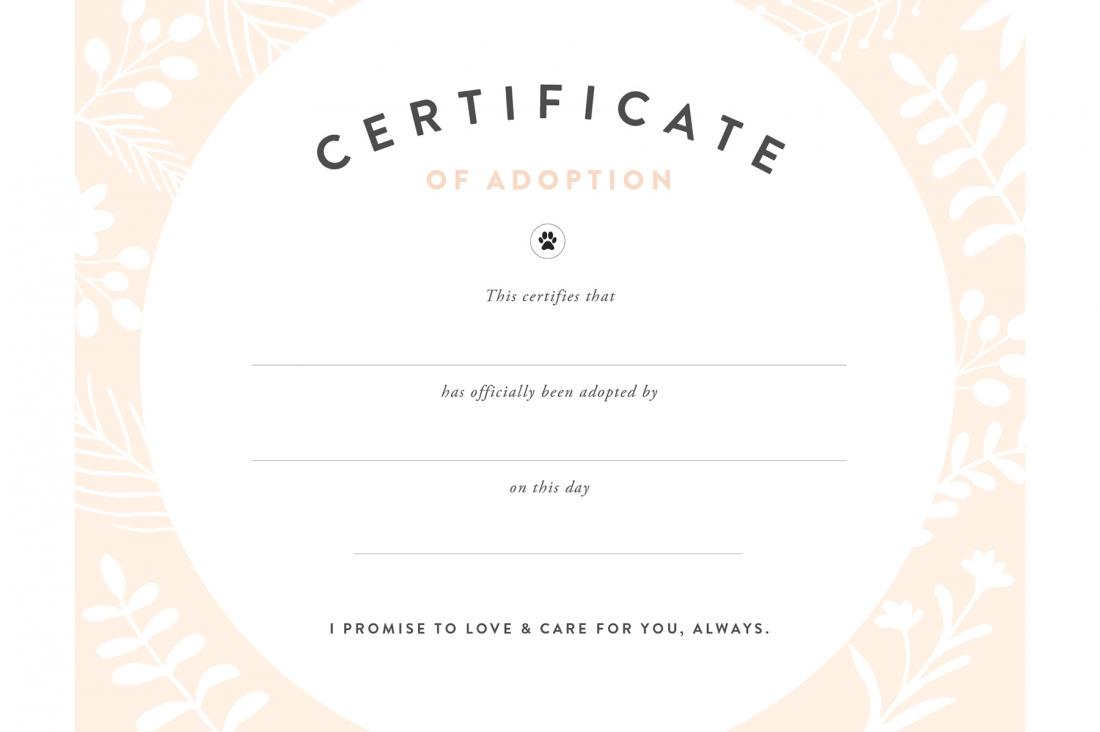 Pretty Fluffy - Free Printable Adoption Certificate