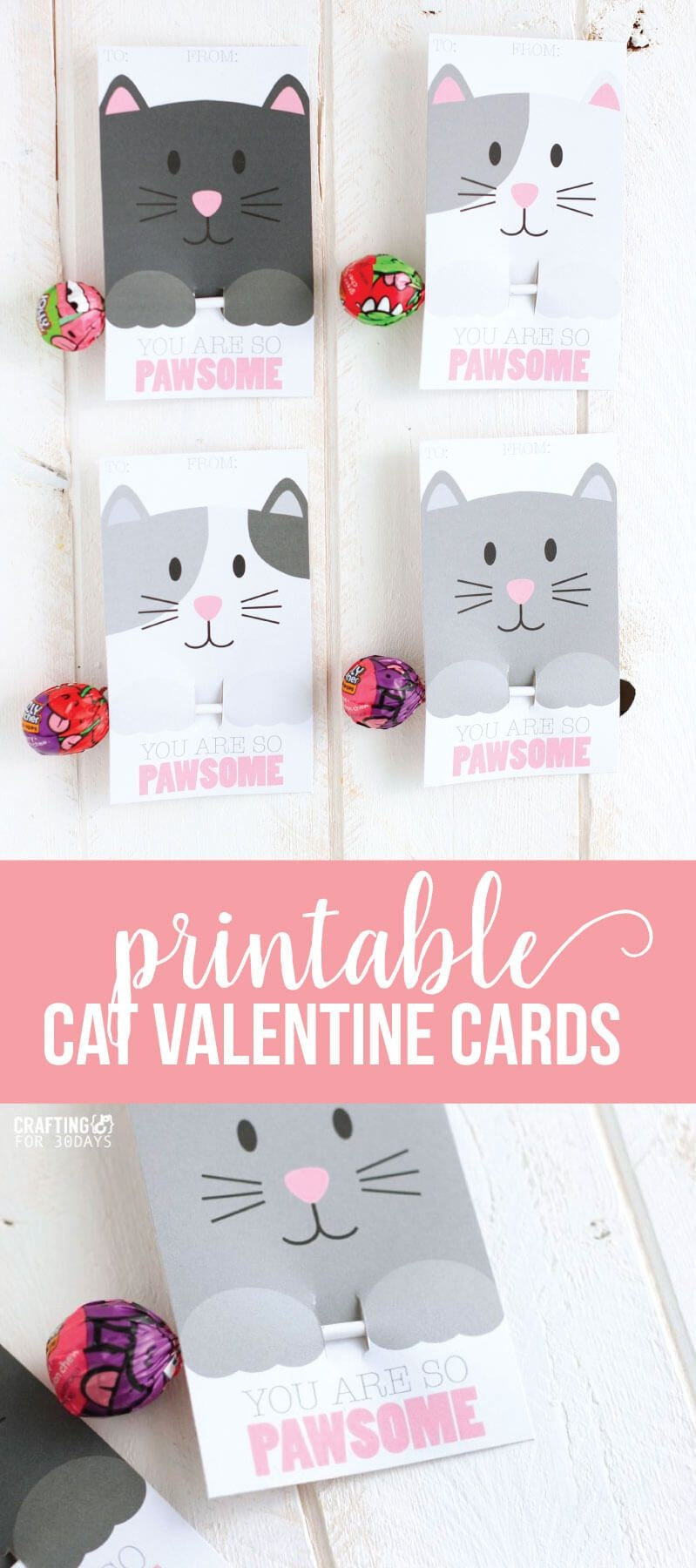 Printable Cat Valentine Day Cards   Valentine's Day Love   Diy - Free Printable Cat Valentine Cards