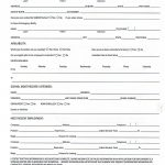 Printable Job Application Forms Online Forms, Download And Print   Free Printable Job Application Template