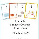 Printable Number Concept Flashcards | Free Number Printables For   Free Printable Number Flashcards 1 30