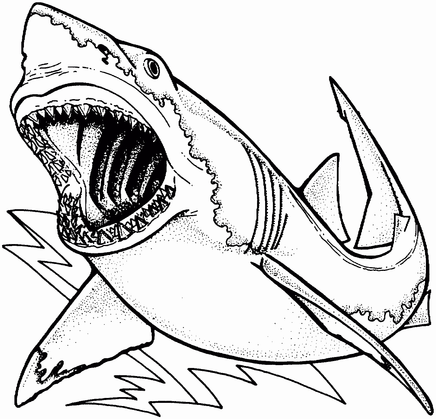 Printable Shark Pictures Luxury Hammerhead Shark Coloring Pages Free - Free Printable Shark Coloring Pages
