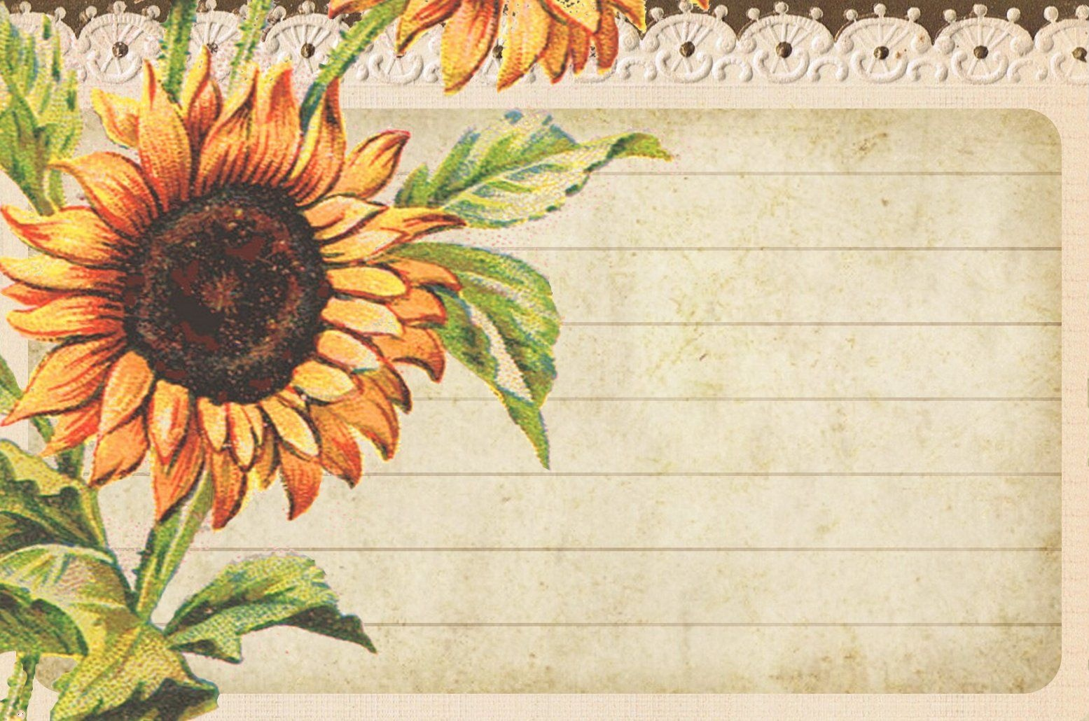 Sunflowers ~ Post Card Sized, Lined Card | Graphics: Lilac - Free Printable Sunflower Stationery