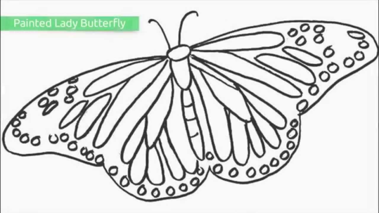 Top 25 Free Printable Butterfly Coloring Pages - Youtube - Free Printable Butterfly