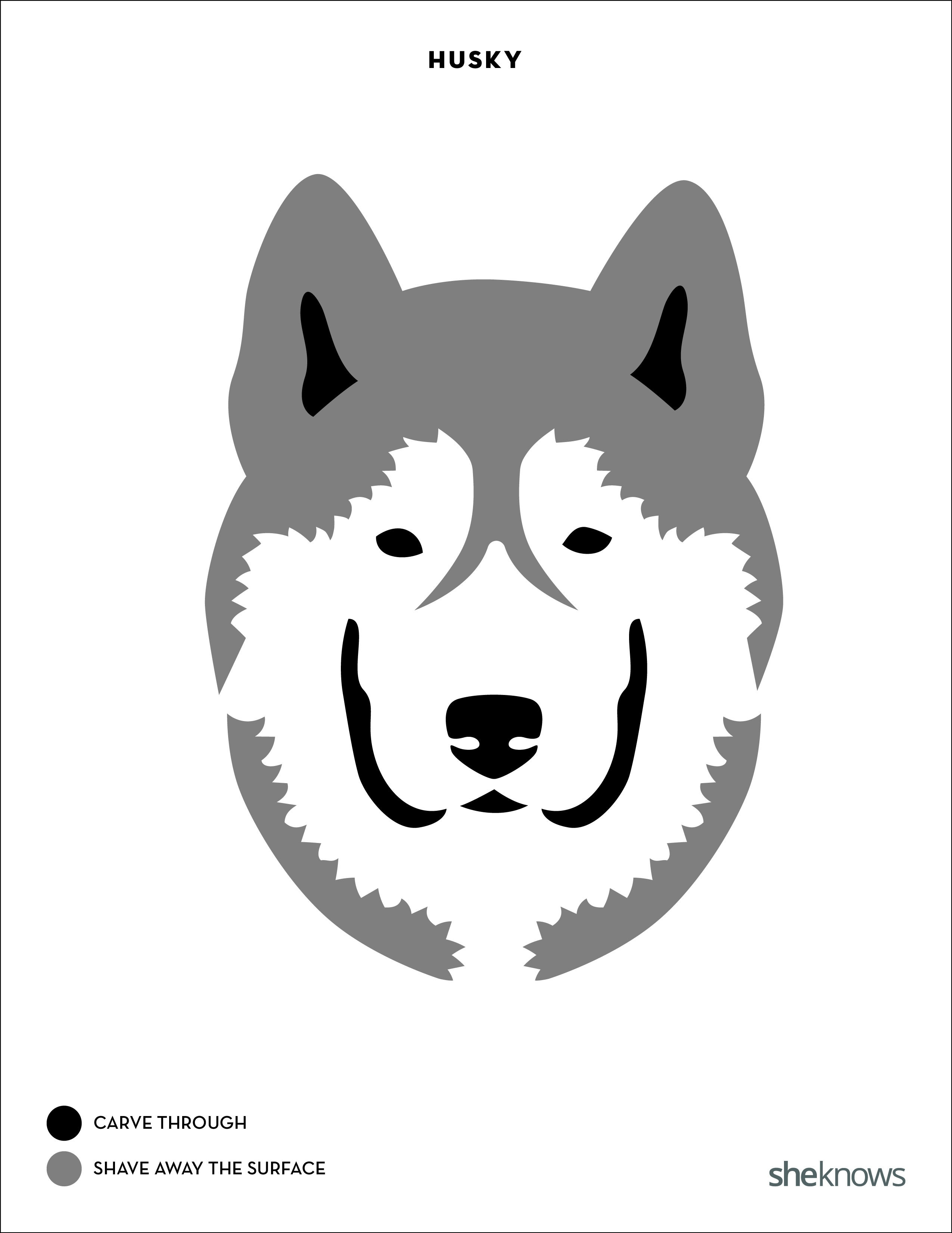 You Too Can Carve Perfect Pit Bull & Corgi Pumpkins With The Right - Free Printable Pumpkin Carving Templates Dog